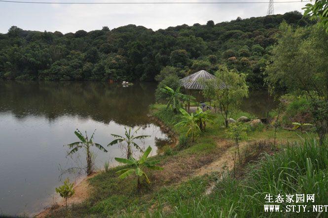 绿色山庄风景图片